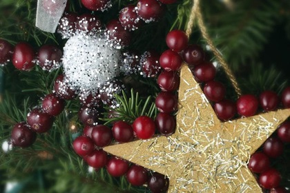 Cranberry Snowflake Ornament