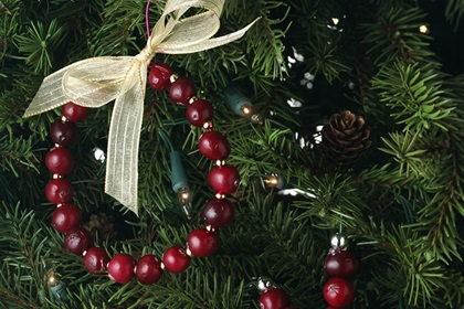 Cranberry Wreath Ornament