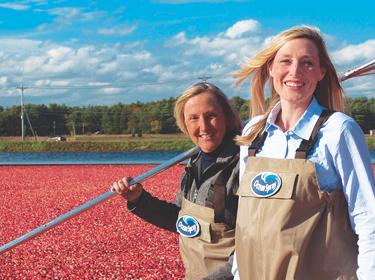 Ocean Spray Cranberry Farmers Growing Cranberries Ocean Spray