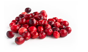 Image of Cranberry