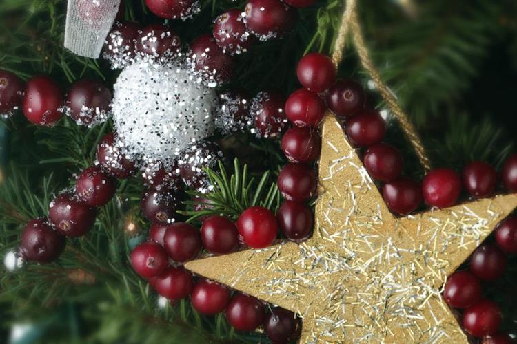 Cranberry Star Ornament