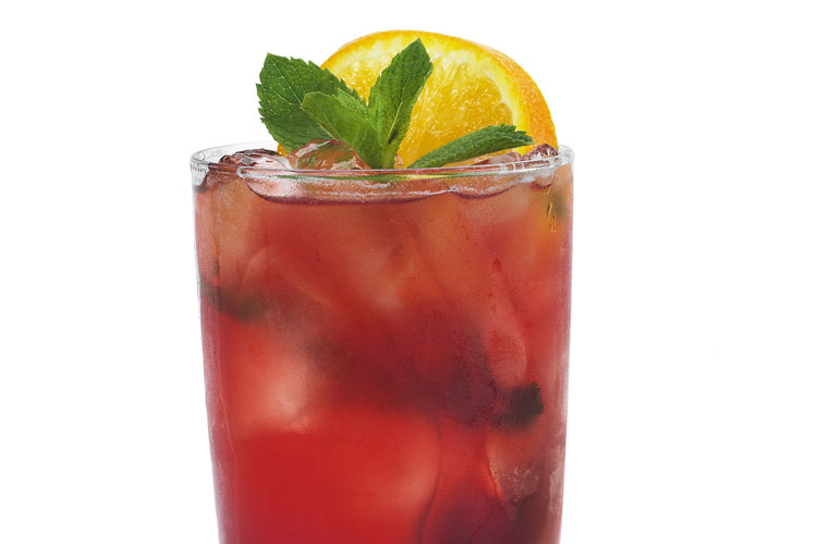 Cranberry Blackberry Mojito