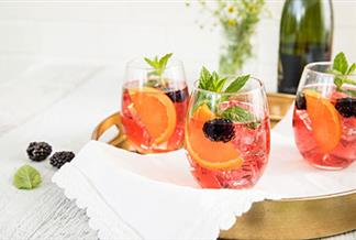 Cranberry Blackberry Sparkling Wine Spritzer